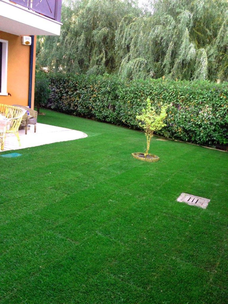 Gestione e manutenzione giardini effebi service for Tappeto erboso prezzi